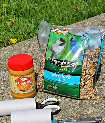 Easy DIY Bird Feeder - Spread peanut butter on the outside of a cardboard tube, roll in bird seed, and hang for the birds