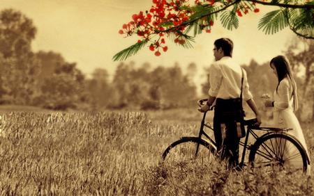 Ảnh tình yêu học trò mùa Phượng nở