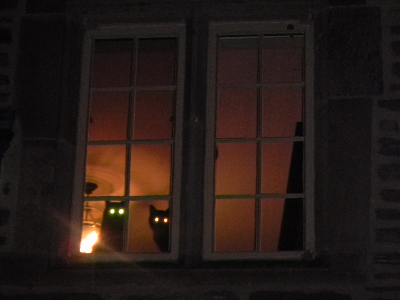 Acravan from a window john lennon paul mccartney for Window lights