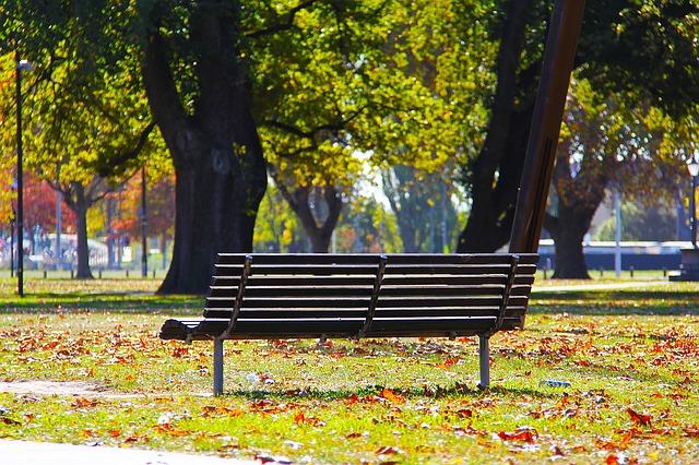 ảnh chiếc ghế mùa thu đẹp