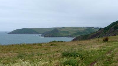 Looking towards the Dart Estuary