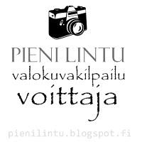 PieniLintu6