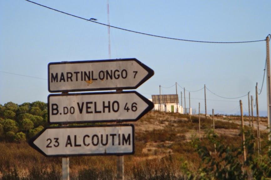 De Alcobaça ao ALLgarve são 590 Kms... DSC07565
