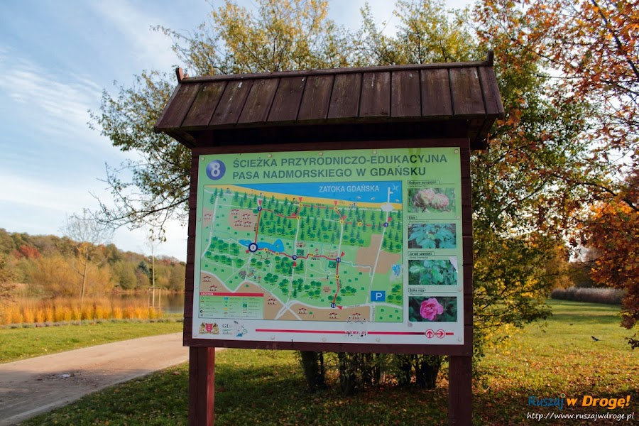 Park Reagana w Gdańsku - ścieżka edukacyjna