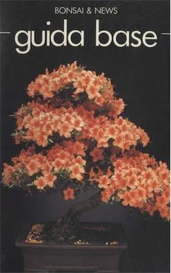 Manuale Bonsai guida base Ita
