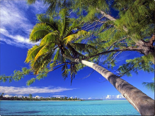 French Polynesia.jpg
