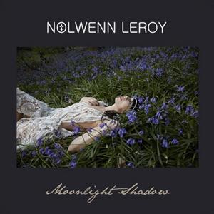Nolwenn Leroy Moonlight Shadow Lyrics