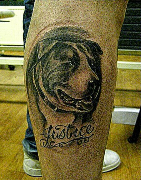 DeviantArt More Like Stafford Shire bull terrier by WildThingsTattoo
