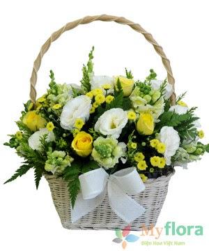Giỏ hoa tươi Tươi sáng- Hoa tươi MyFlora