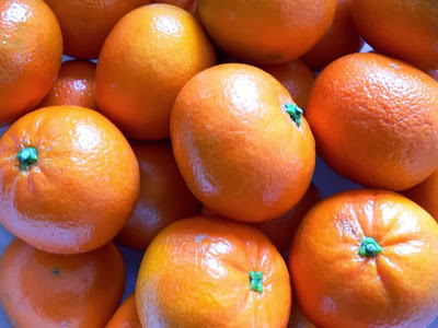 The Algerian origins of the clementine: a sweet story