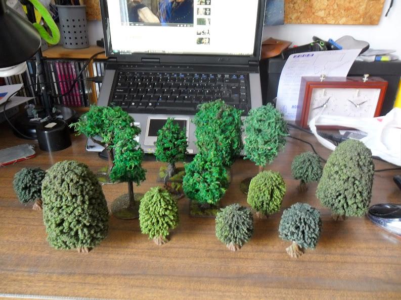 El nacimiento de un bosque - Página 2 Arbol%2B6%2BSAM_0855