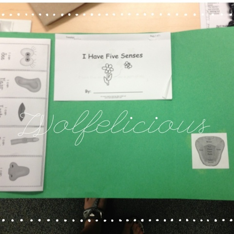 photo of wolfelicious 5 senses book