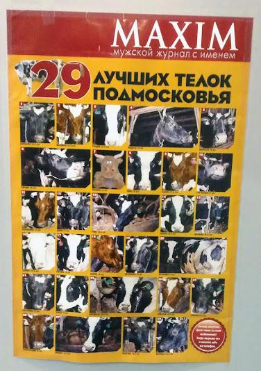 редакция журнала maxim