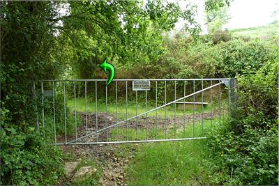 Se cruza el portón