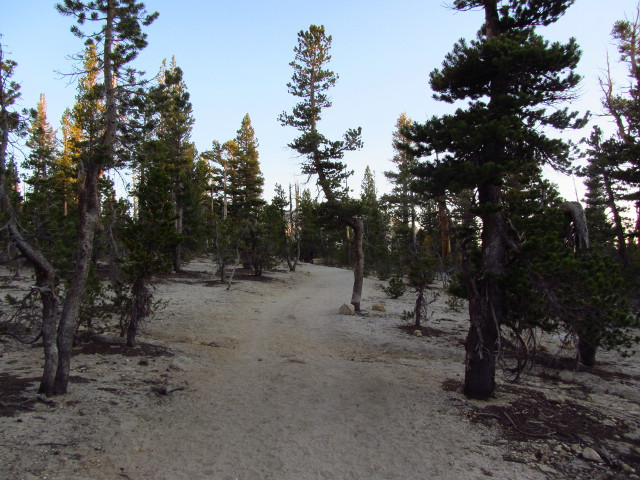 decomposed granite trail