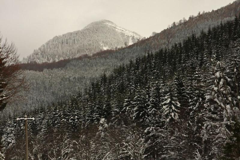 iarna zapada schi de tura Azuga Predeal Valea Azugii munte