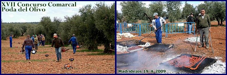 XVII Concurso Comarcal Poda del Olivo 2009