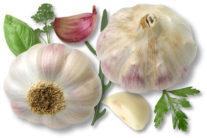 Herborlaria y Plantas Medicinales
