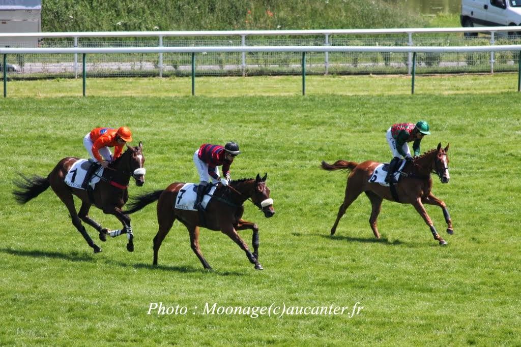 Photos Auteuil 8-06-2014  IMG_1510