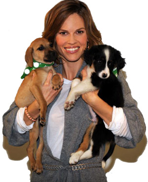 Hilary Swank holding two dogs