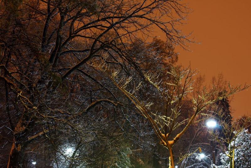 iarna zapada Bucuresti noapte fotografie