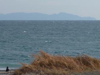 伊豆半島を眺める