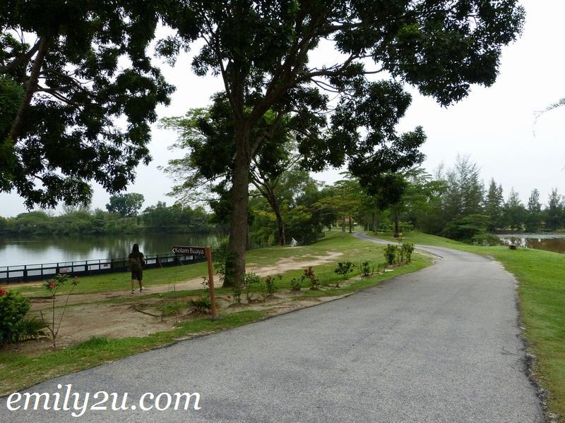Paya Indah Wetlands, Dengkil