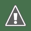 Celine Dion culpa drogas do showbiz por morte de Whitney Houston