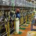 Đơn hàng vắt sữa bò cần 3 nữ làm việc tại Shiga Nhật Bản tháng 01/2018