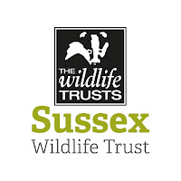Sussex Wildlife Trust