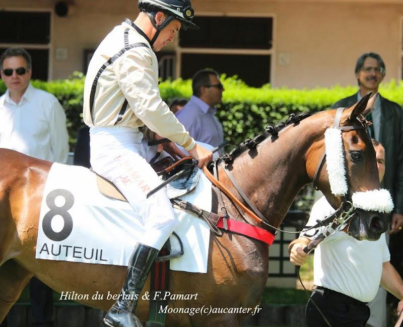 Photos Auteuil 8-06-2014  IMG_1619