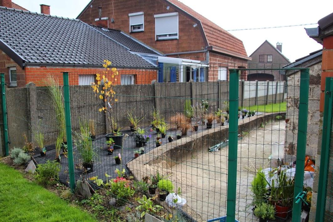 Nouvelle maison dit aussi nouveau jardin... IMG_9512