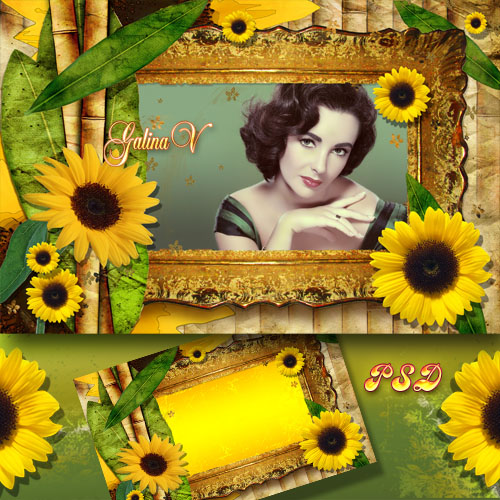 Винтажная рамка - Цветы солнца