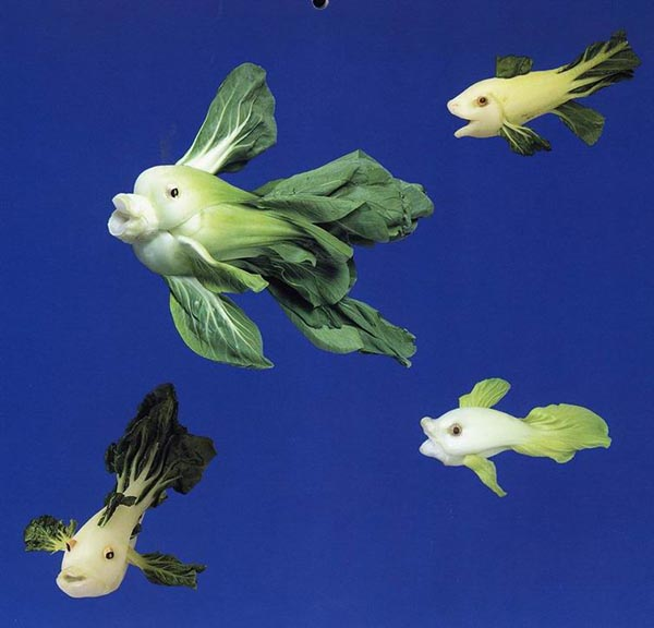 Food Art - Cabbage Fish