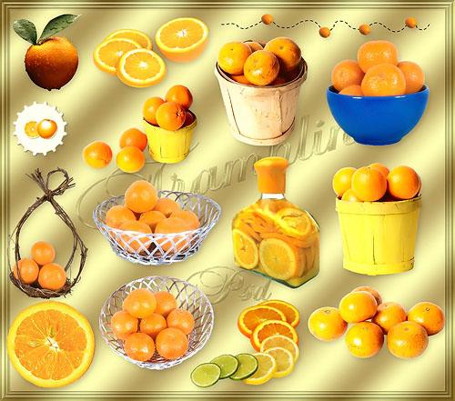 Клипарт - Апельсины
