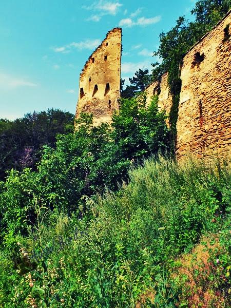 cetatea saschiz iulie 2013