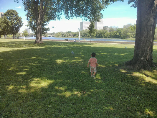 Strathcona Park, Ottawa, ON K1N 8J7, Canada