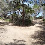 Track down to Bournda Lagoon (106693)
