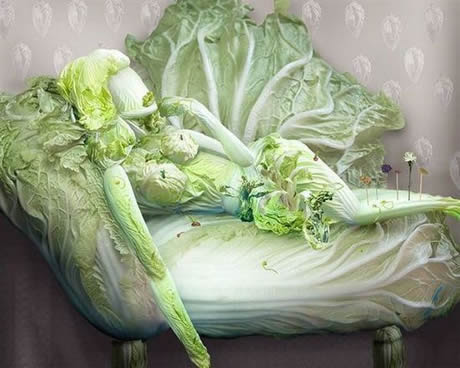 cabbage figures 1
