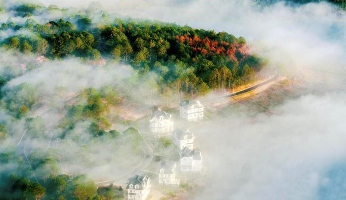 Thơ Đà Lạt mù sương