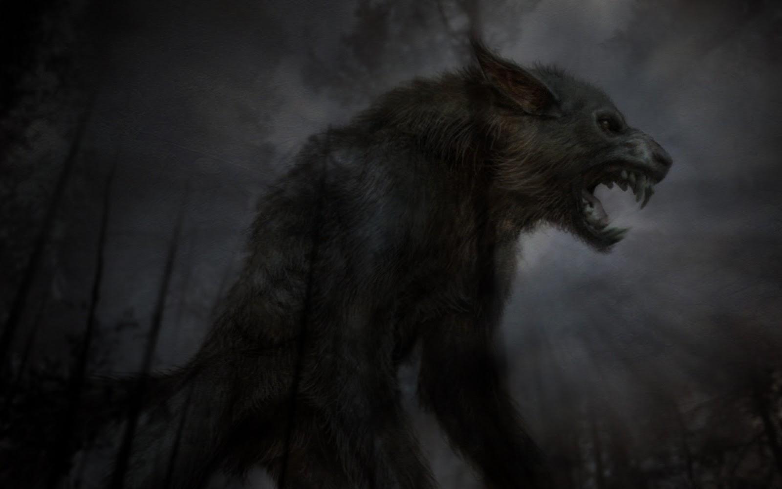 huilende wolf fantasie dieren wallpaper blauw zwart hd foto van Car ... Angry Black Wolf Drawing