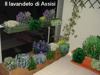 Interesting progetti giardini online gratis progetti - Giardini sui terrazzi ...