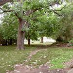 Ironbark Flat Picnic Area (35963)