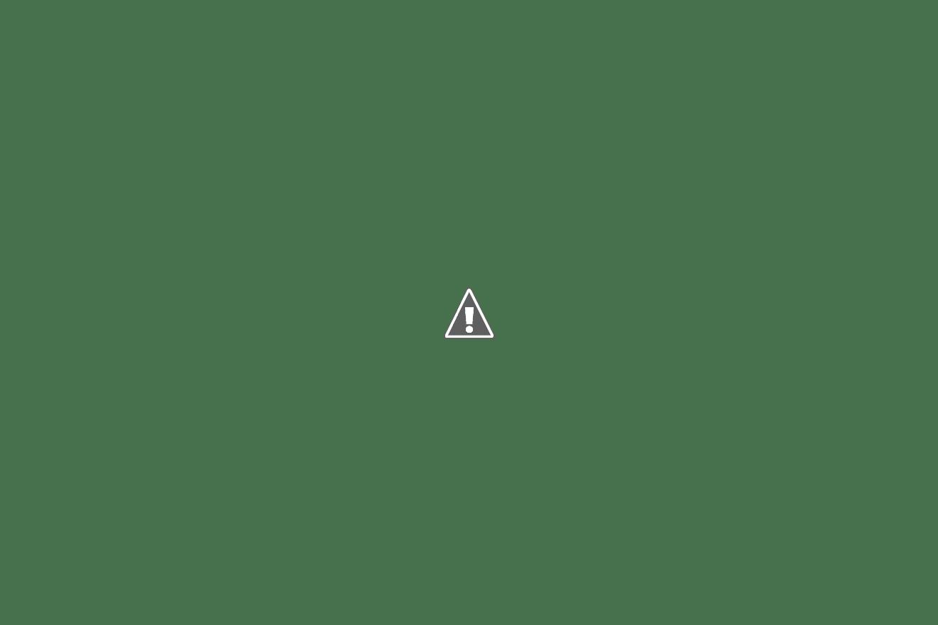Vacuum Hose 1992 Cadillac Deville Fuse Box Block And Schematic 1993 Dodge Spirit Pontiac Sunbird Engine Diagram 1995 Grand Dakota
