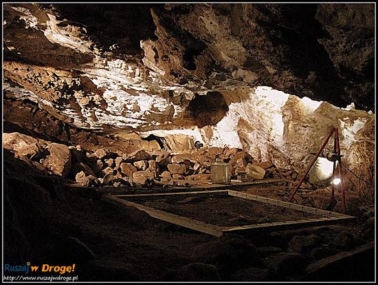 jaskinia niedźwiedzia - ekspozycja znalezisk