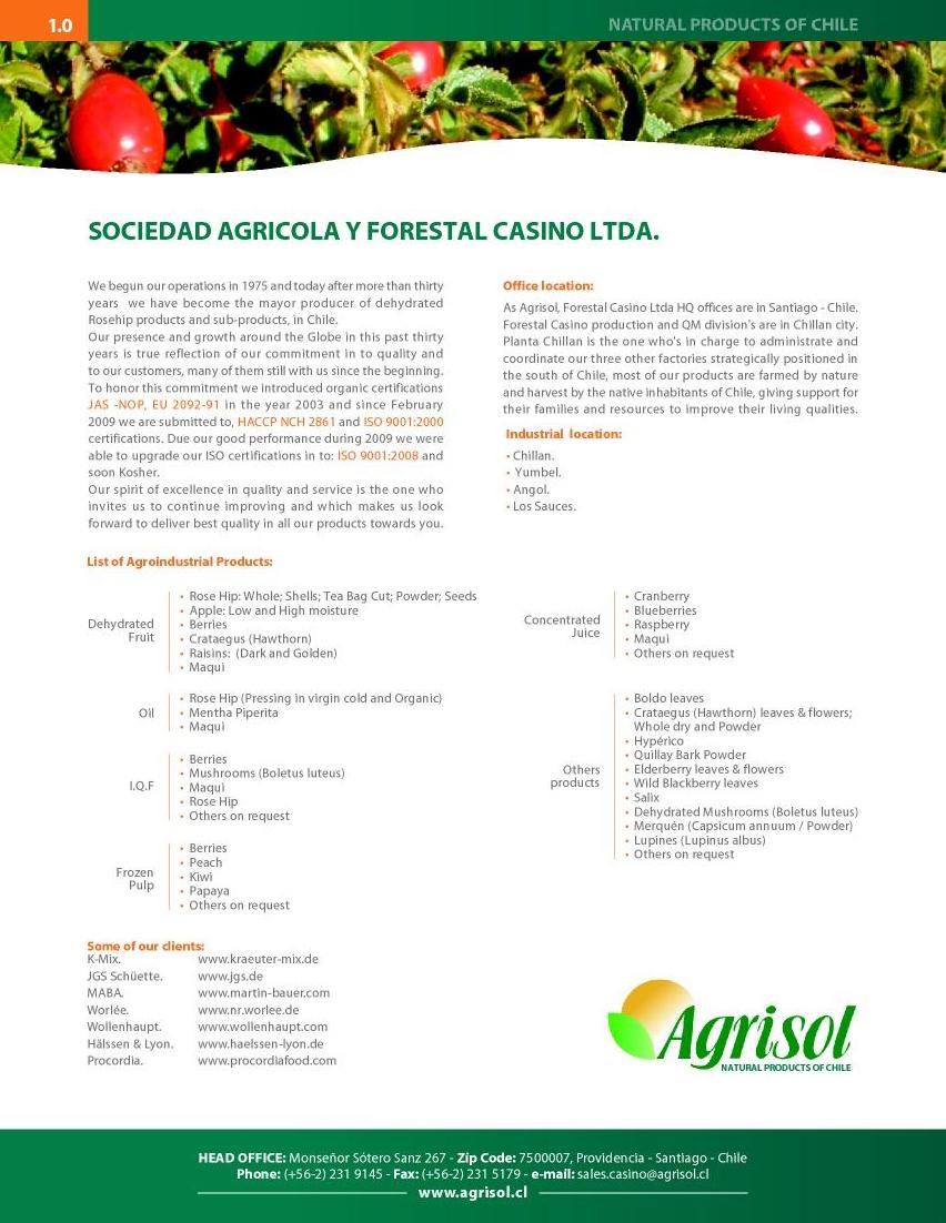 Forestal casino ltda casino.1995