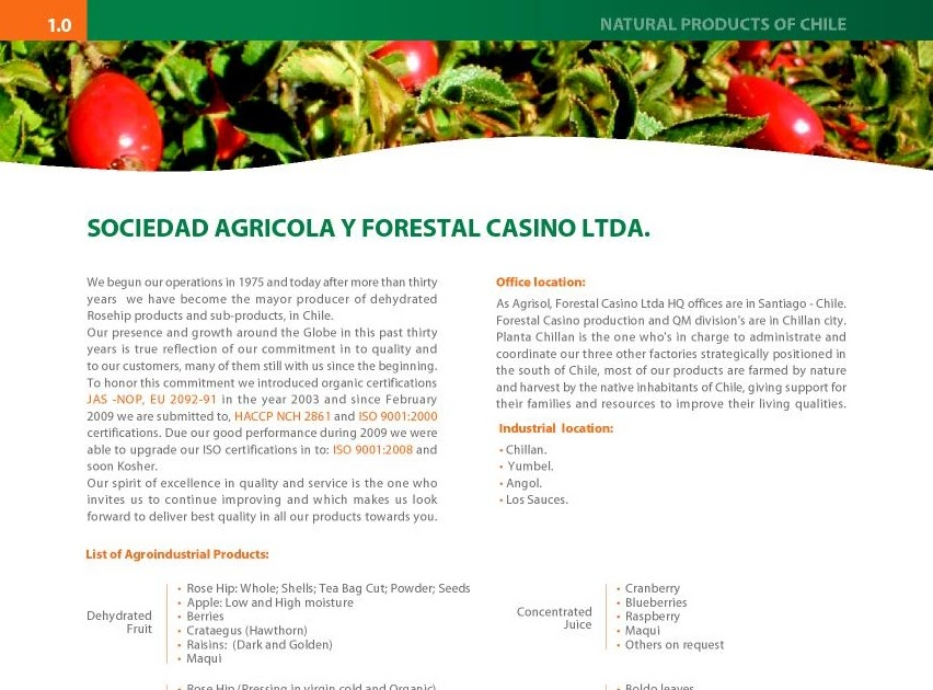 Forestal casino ltda hollywood casino tunica reviews
