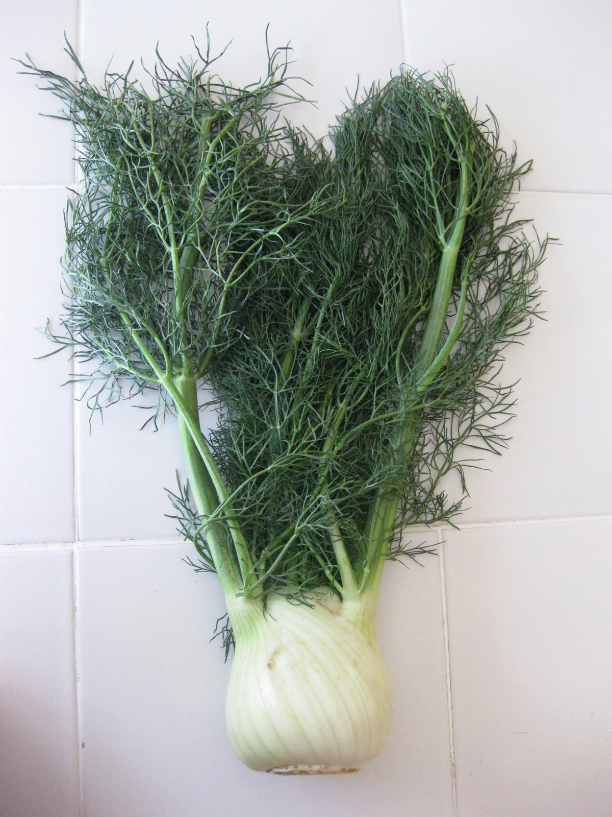 how to eat fennel bulb