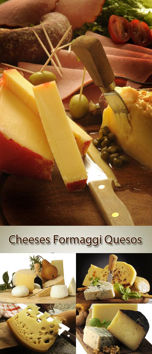 Stock Photo: Various mature cheese