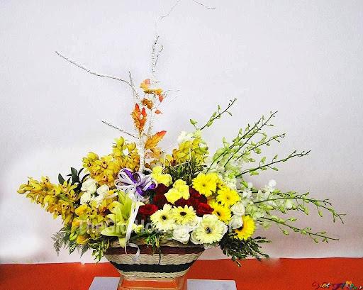 Cắm hoa lan và cúc cho ngày tết